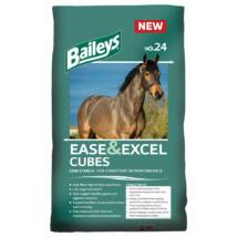 No.24 Ease & Excel Cubes